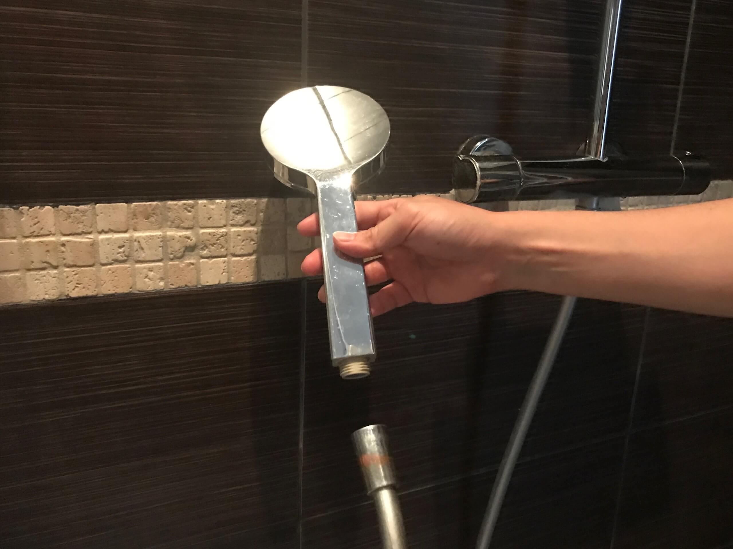 海外 硬水対策 フランス イオナック シャワーヘッド フィルター 効果 取り付け方