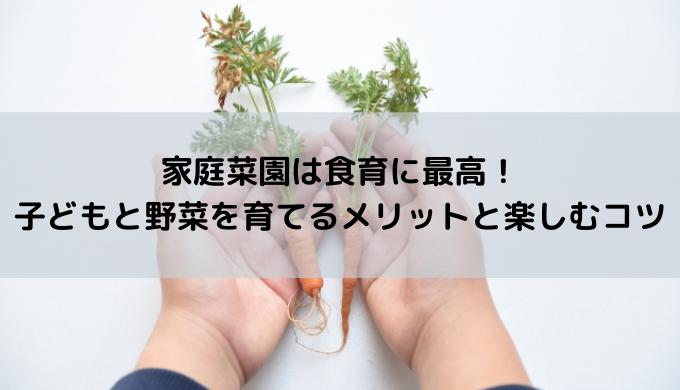 子どもと家庭菜園 食育効果 メリット 野菜を育てる ベランダ菜園 自己肯定感