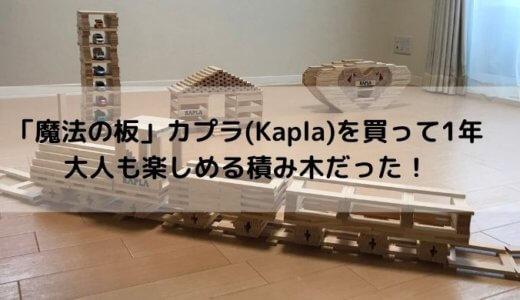 カプラ(Kapla)は高くても買ってよかった!1000ピース入りを1歳から使い始めました